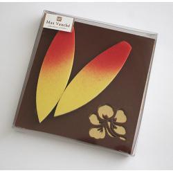 Plaque Surf Lait - 100g