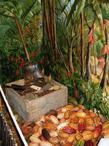 L'ilé Chocolat Sao Tomé